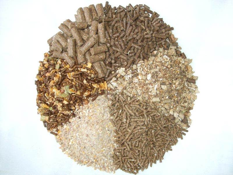 poultry feed formulation animal feed bulk corn gluten meal 60% protein price
