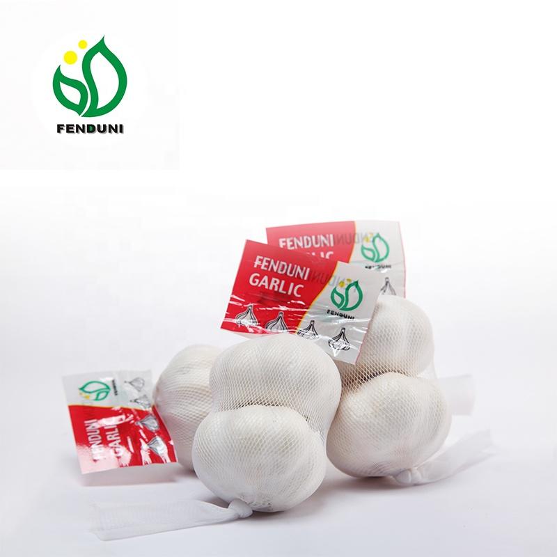 Fresh garlic per ton price / Garlic Fresh AJO