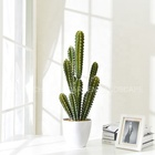 New design plastic bonsai cactus plants artificial succulent plants for indoor decor