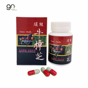 2020 hot sale made in Taiwan Antrodia powder capsule make healthy care and keep liver energy