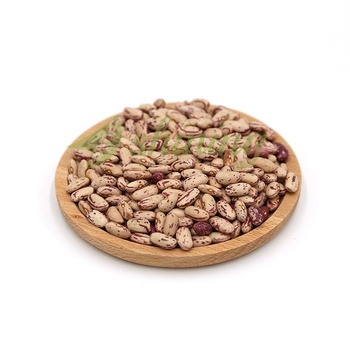 China Price Specification Light Brown Dried Pinto Kidney Beans