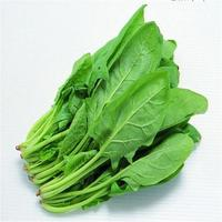 CHEAP WHOLE Sale!Fresh Spinach/ New harvest 2019 Frozen Spinach for sale and EXPORT/ CHEAP PRICES