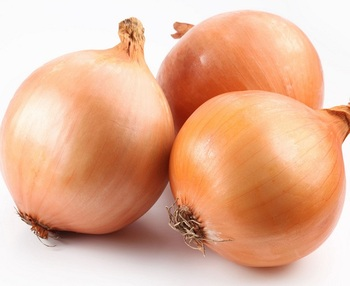 Fresh Organic Natural Red Onions For Export