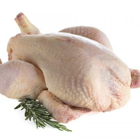 HALAL CERTIFIED FROZEN WHOLE CHICKEN AT BEST COMPETITIVE MARKET PRICES