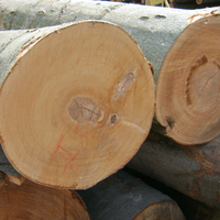 Hard Wood Timber, Lumber and Logs