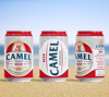 2019 Hot Selling Can Tinned OEM Brand Lager Beer