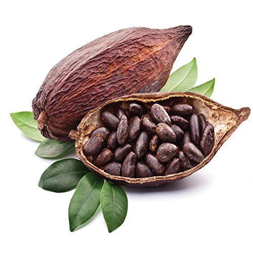Germany Importers Of Cocoa, Germany Importers Of Cocoa Manufacturers