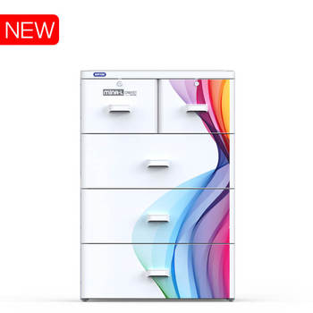 Hot product - MINA L Cabinet No.915/4, dimension 70 x 48 x 130 cm