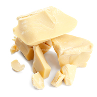 Best Product Cocoa Butter with Raw Material GMP Standard for Wholesaler