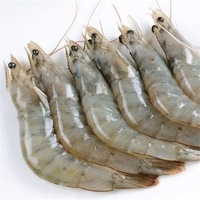 White Shrimp / Fresh Frozen White Vannamei For Sale