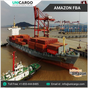 Fast Process from China to USA Amazon FBA Sea Freight Forwarder