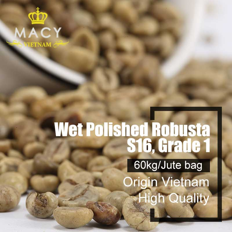 Vietnam Robusta Coffee Green Coffee Beans Wet Polished Robusta Grade 1 Screen 16