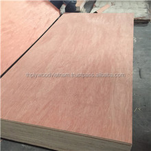 hardwood plywood at best price size 1220mm x 2440mm thickness 7mm-20mm from eucalyptus