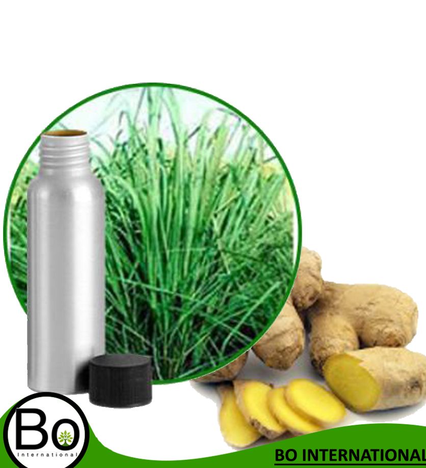 Ginger Grass Essential Oil - Buy Ginger Flower Essential Oil,Edible  Essential Oils,Essentially Yours Essential Oils Product on Alibaba com