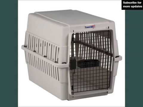 Plastic Dog Kennels Set Of Picture Collection Ideas | Plastic Dog Kennels