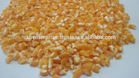 Best Quality Yellow Maize Grit Made with Advance Processing Technique for Bird Feeding