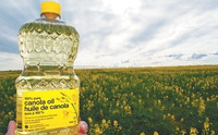99.99% Pure Refined Rapeseed Oil