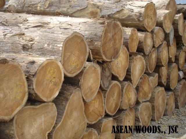From Vietnam Teak Wood Logs Buy Teak Wood Logs Wood Log Raw Teak Wood Product On Alibaba Com
