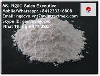 Heavy calcium carbonate powder made in Vietnam for Plastic Processing