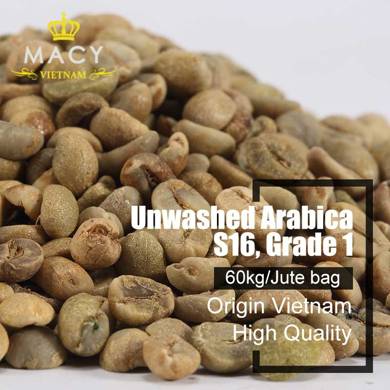 Unwashed Arabiaca Grade 1 Screen 16 Coffee Beans Vietnam High Quality