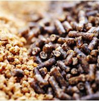 Organic GrainMix for Animal Feed per your request