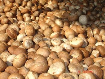 Betel Nut/ Areca Nut - Buy Betel Nut,Dried Betel Nut,Split Betel Nut  Product on Alibaba com