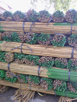Straight raw bamboo poles for construction & building materials