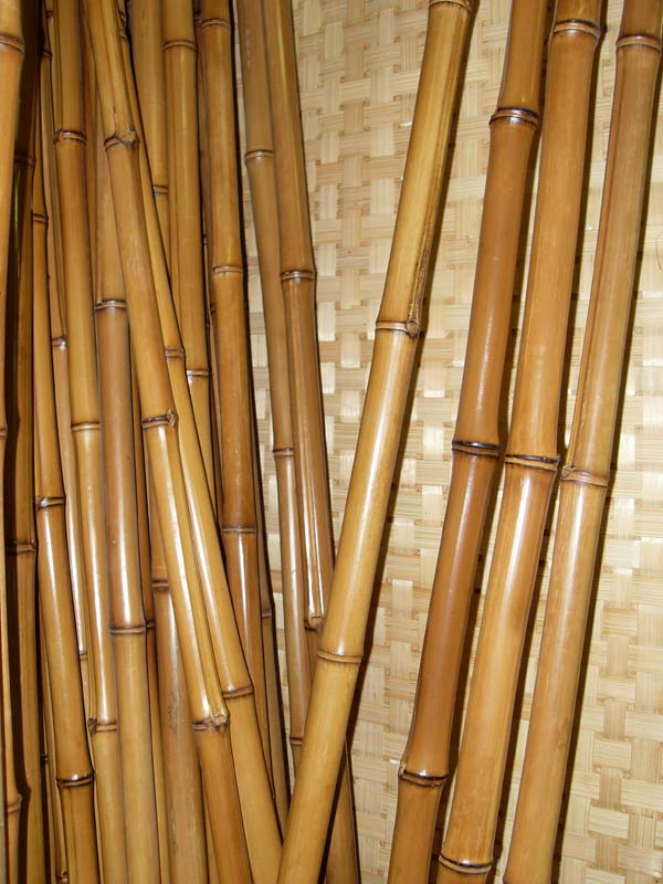 Bamboo raw materials for export