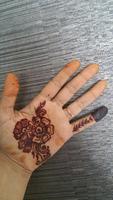 High quality organic henna powder for body art.