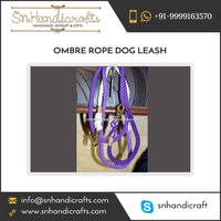 Strong and Durable Ombre Rope Dog Leash at Export Price