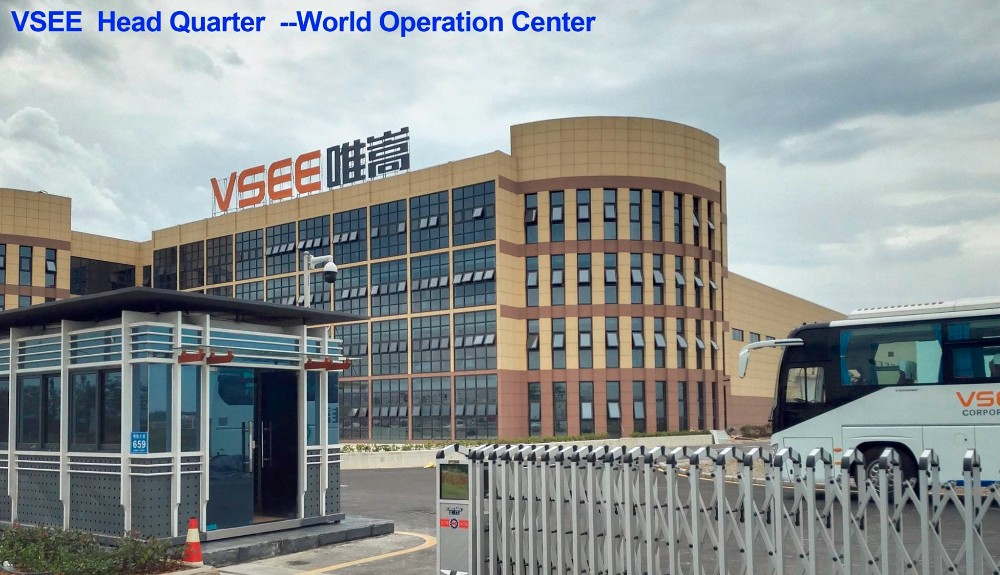 VSEE Made In China Cereal Seeds Color Sorter Price