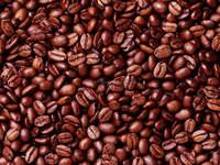 100% Cheap Pure Natural Cocoa and Cocoa Powder