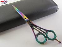 Professional Titanium Color Hair Scissor & Barber Scissor