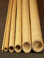 H_Bamboo raw materials - Natura bamboo pole solid / Cane - Dry bamboo Decor, Builders & Architectural by hangulvietnam.xyz