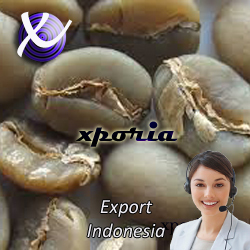 ARABICA Coffee Beans GAYO MANDHELING Grade1 | Indonesia Origin | Popular premium Sumatera coffee beans