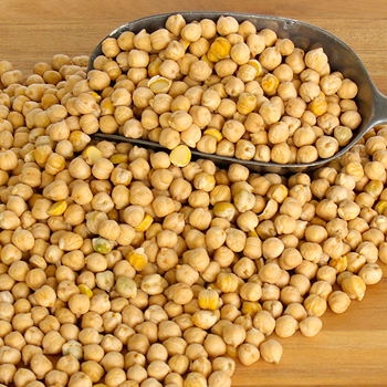 Kabuli Chana,Kabuli Chickpeas,Indian Milky White Chickpeas