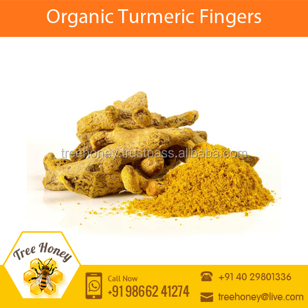 High Quality Polished Turmeric Fingers with Longer Shelf Life