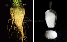 BEET SUGAR FOR SALE