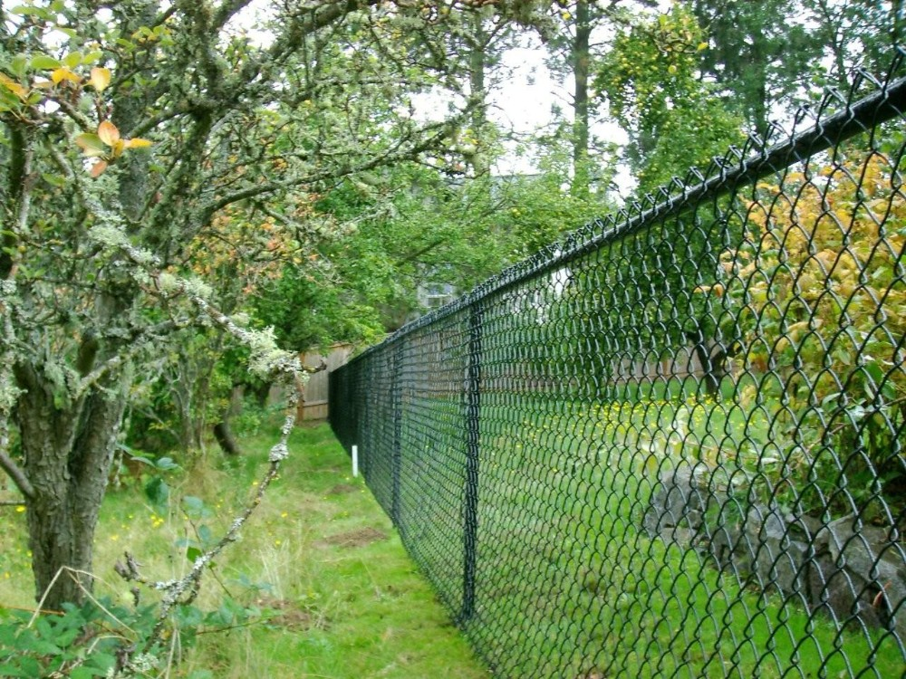 Fencing grillage chain link fence buy picket fences