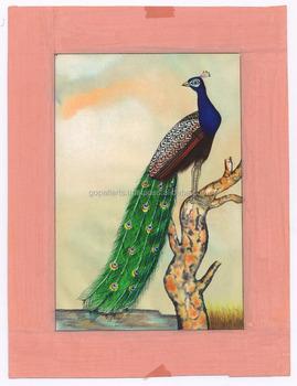Tavuskuşu Portre Orijinal Kağıt Boyama Orijinal Su Renk El Boyalı