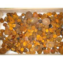 100% Cow Gallstones And Ox Bezoar