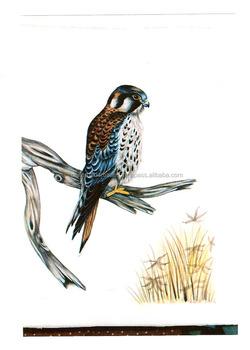 El Yapımı Ve El Boyalı Ipek Kuş Resimlerinde Ev Dekor Içinev