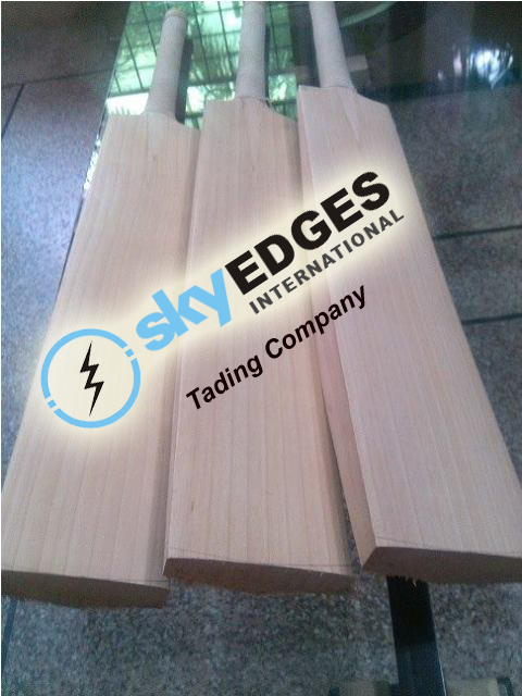 Custom English Willow Cricket Bats In Stock Available