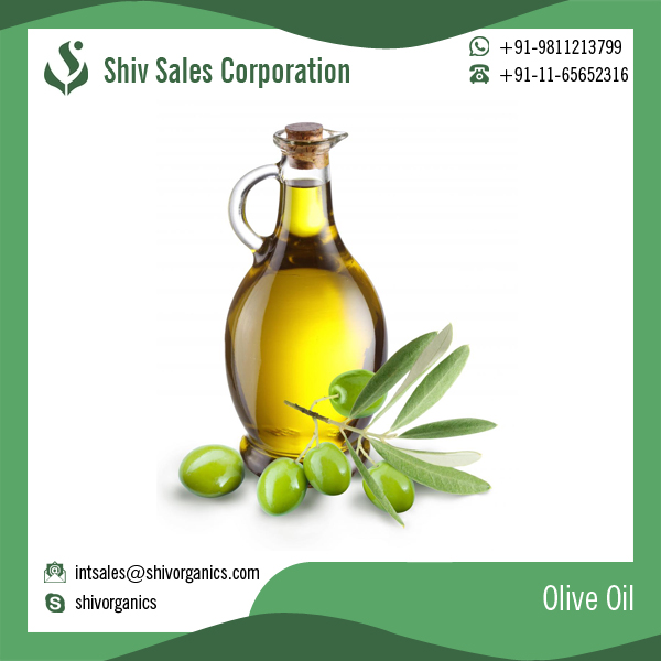 Extra Virgin Pure Olive Oil of Best Quality for Bulk Purchase