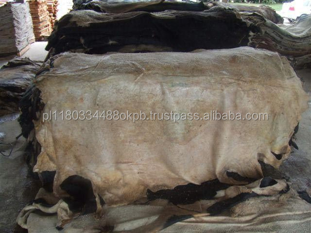 Wet Salted Donkey Skin / Dry Salted Donkey Hide / Air dried Donkey Skin for