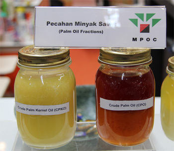 Malaysia is the World's Second Largest Producer and Exporter of Palm Oil.