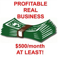 Get your own profitable online business making $500/month at least!