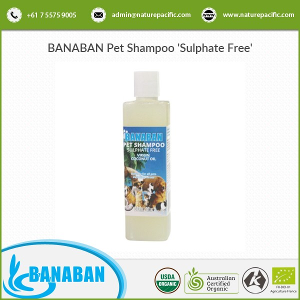 Best Quality Pure and Natural Organic Pet Shampoo from Trusted Supplier