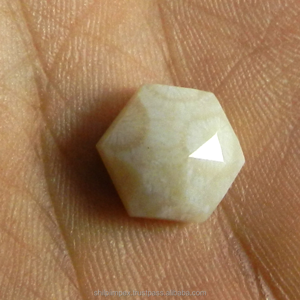 Fossil Coral 5.60 Cts, 12X12mm Hexagon Rose Cut semi precious stones for jewelry SI0309