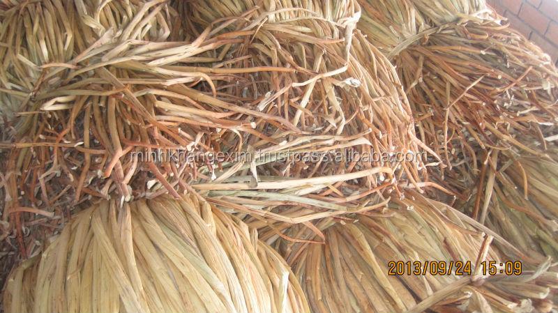 Water Hyacinth Fiber _ Qiu Qiu : 2598494113